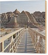 Badlands Walkway Wood Print