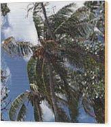Bahamas Sky Wood Print
