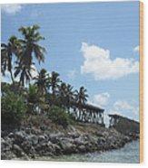Bahi Bridge Wood Print