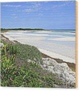 Bahia Honda Key Wood Print