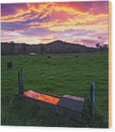 Bahrs Scrub Sunset Wood Print