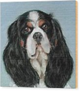 Bailey The Cavalier King Charles Spaniel Wood Print