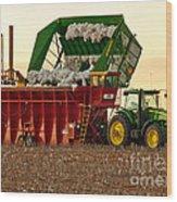 Bailing Cotton Wood Print