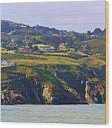 Baily Lighthouse Panorama 1 Wood Print