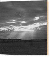 Baja Rays Wood Print