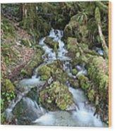 Baker Lake Steam And Waterfalls Wood Print