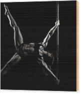 Balance Of Power 2012 Series #5 Wood Print
