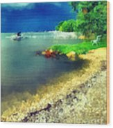 Balaton Lake Shore Wood Print by Odon Czintos