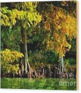 Bald Cypress 2 - Digital Effect Wood Print