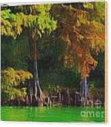 Bald Cypress 3 - Digital Effect Wood Print
