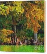 Bald Cypress 4 - Digital Effect Wood Print