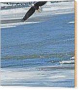 Bald Eagle 2832 Wood Print