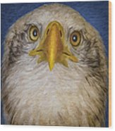 Bald Eagle 4 Wood Print