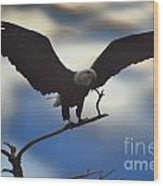 Bald Eagle And Clouds Wood Print