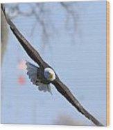 Bald Eagle And Flag Wood Print