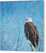 Bald Eagle Blues Wood Print