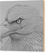 Bald Eagle Drawing Wood Print