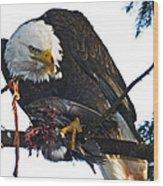 Bald Eagle Eating It's Prey Wood Print