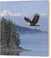 Bald Eagle In Flight Over The Inside Wood Print