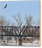 Bald Eagle Near Ludwig Mill Wood Print