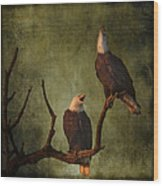 Bald Eagle Serenade Wood Print