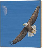 Bald Eagle Soaring With The Moon Wood Print