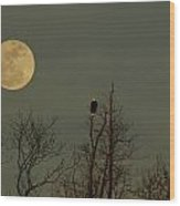 Bald Eagle Watching The Full Moon Wood Print