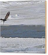 Bald Eagle With Fish 3655 Wood Print