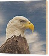 Bald Eagle With Piercing Eyes 1 Wood Print