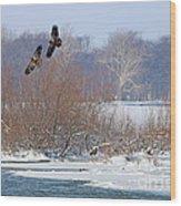 Bald Eagles At Providence Dam 1107 Wood Print