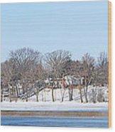 Bald Eagles In Tree In Grand Rapids Ohio Panorama Wood Print