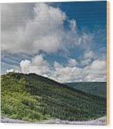 Bald Hills In Spring Wood Print