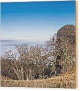 Bald Hills Vista Panorama Wood Print
