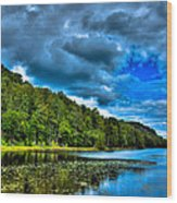 Bald Mountain Pond In Summer Wood Print