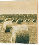 Baled And Ready Wood Print