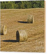 Bales In The Golden Hour Wood Print