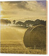 Bales In The Morning Mist Wood Print