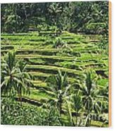 Balinese Dream Wood Print