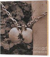 Ball And Chain Closure  Wood Print