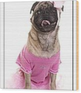Ballerina Pug Dog Wood Print