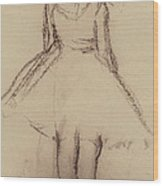 Ballerina Viewed From The Back  Wood Print