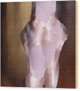 Ballet Slippers 2 Wood Print by Karen Larter