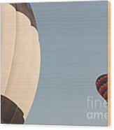 Balloon-color-2shot-7366 Wood Print