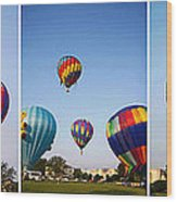 Balloon Festival Panels Wood Print