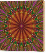 Balloon Kaleidoscope Wood Print