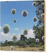 Balls Wood Print by Eric Kempson