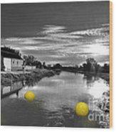 Balls Of Athelney  Wood Print