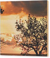 Baltic Sunset In The South Of Sweden Wood Print