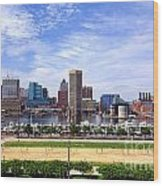 Baltimore Inner Harbor Beach Wood Print by Olivier Le Queinec
