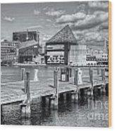 Baltimore Inner Harbor Skyline Vi Wood Print